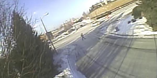 Pedestrian Counts 0015