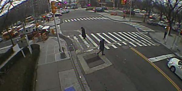 Pedestrian Counts 0119