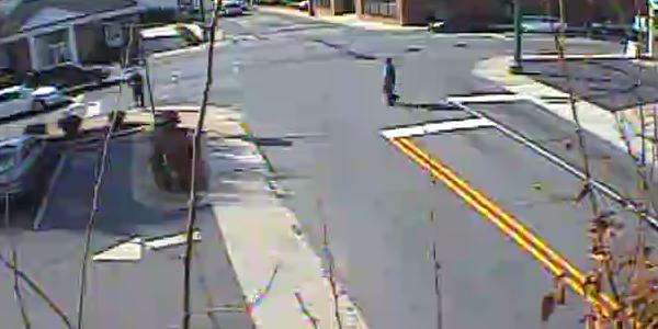 Pedestrian Counts 0070