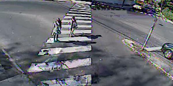 Pedestrian Counts 0071